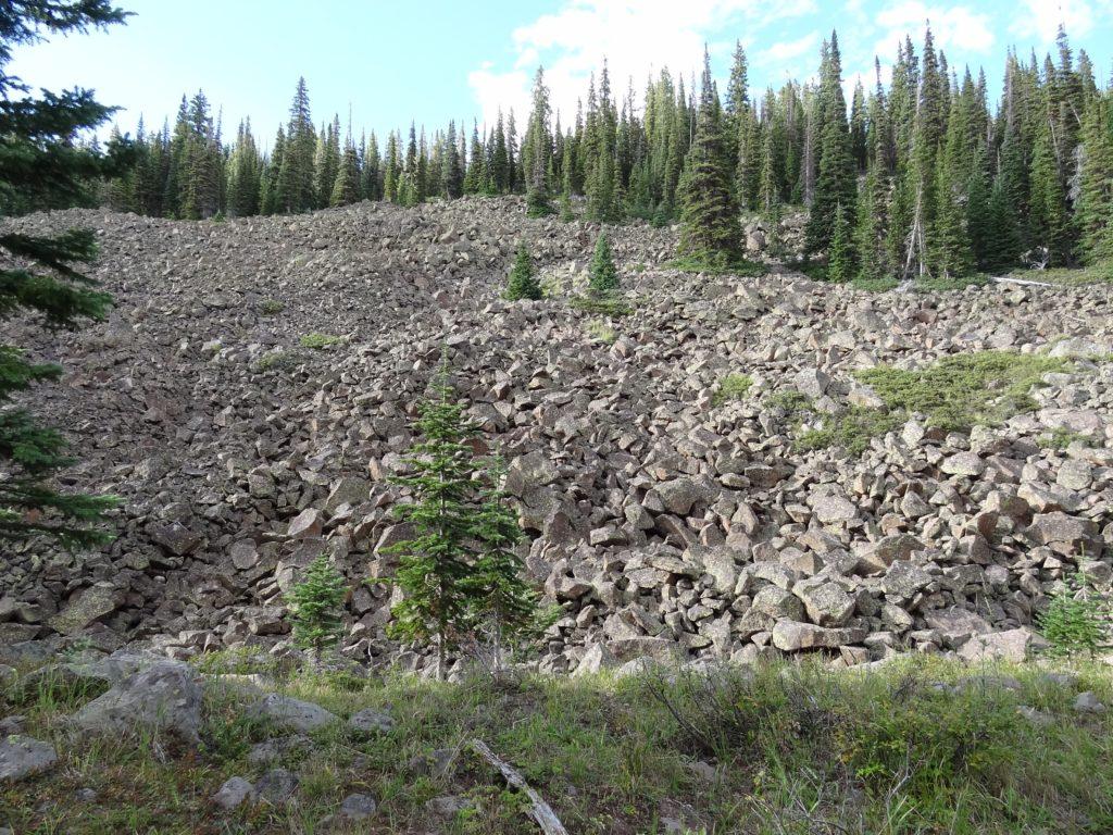 Colorado Elk Country